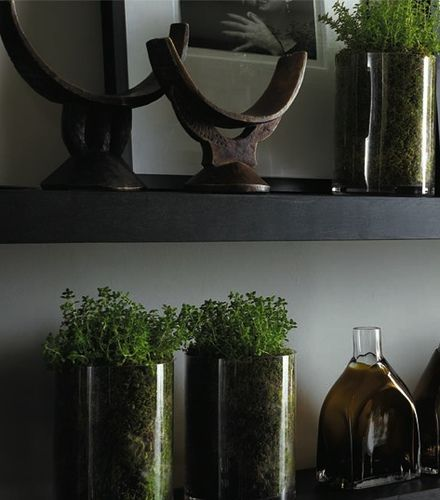 shelf arrangment