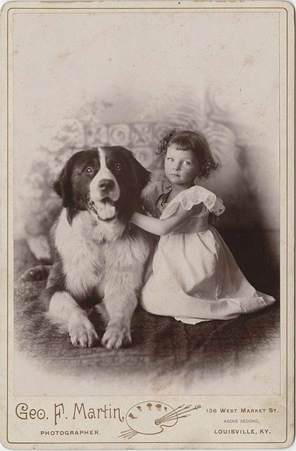 An immensely precious cabinet card of little girl a large, beautiful dog. Image by Geo. F. Martin of Louisville, Kentucky. #vintage #portrait #child #dog