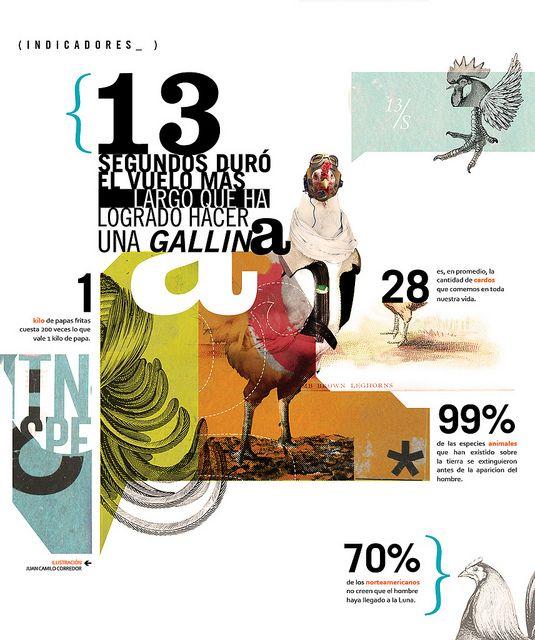 Gallina infographic