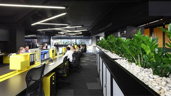 Ellivo Architects fitout, Brisbane office design