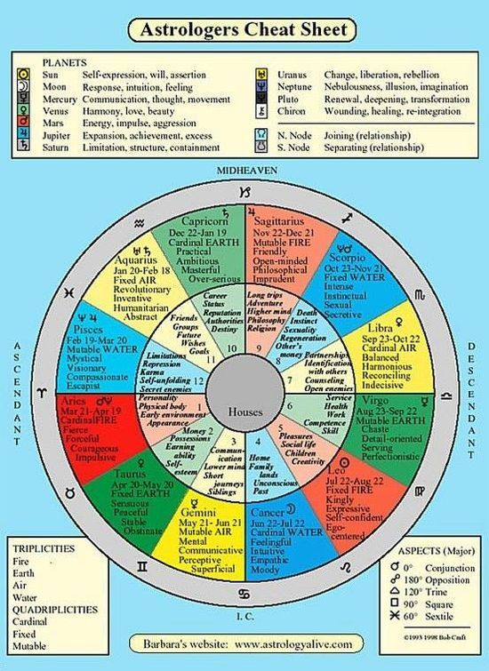 Astrological chart breakdown of each houses #soft skills #softskills #self #self personality #soft skills