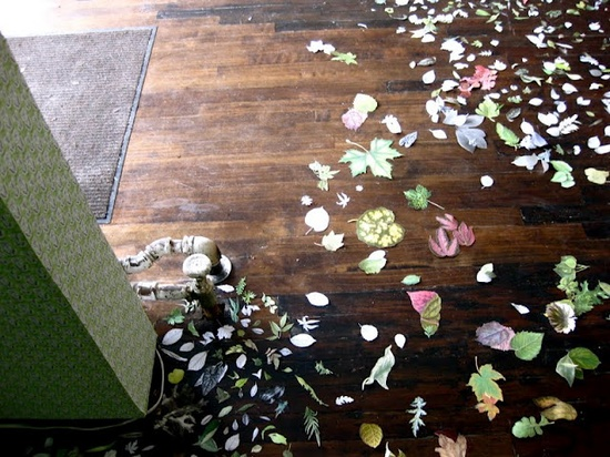 intriguing floor design