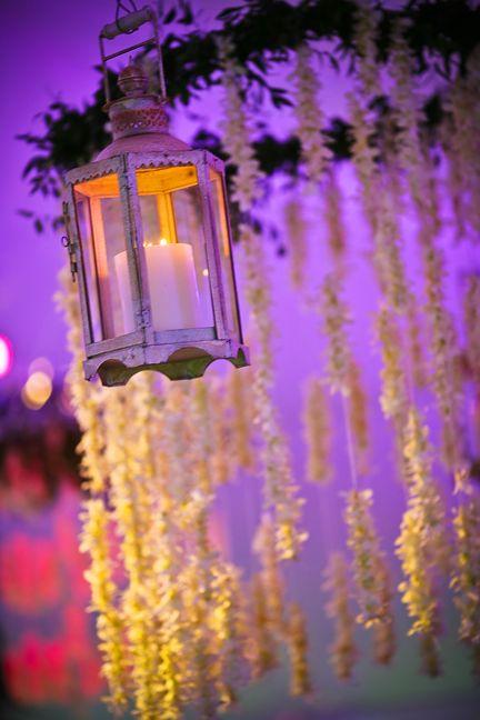 Candle Lit Lantern #purple #blooms