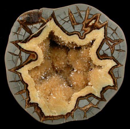 Septarian Geode half