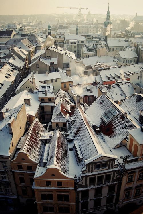 reminds me of T Resi's apt Vienna - a sea of roofs with a sprinkle of winter sugar....