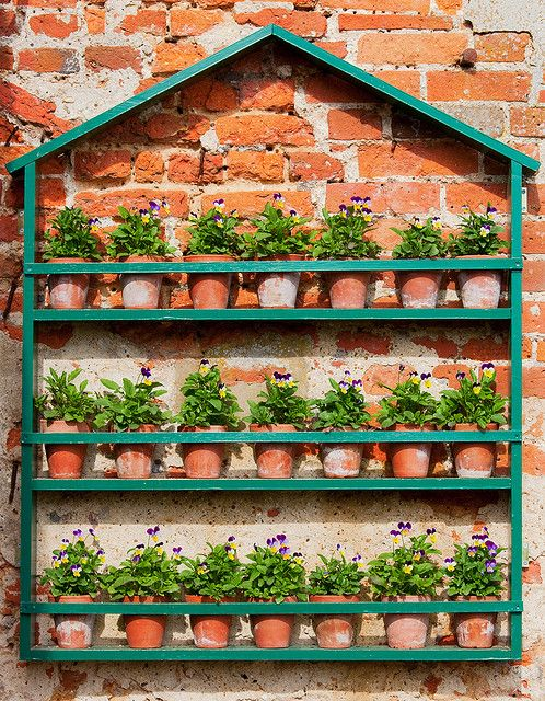 Simple container garden on a wall