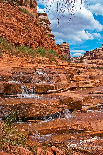 Grand Gulch, Cedar Mesa; photo by Gary Randall