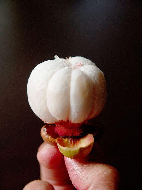Mangosteen  #food #photography #fruits #fruit