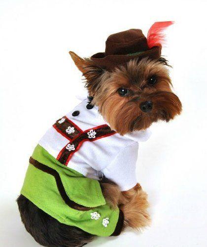 bad Ass Petz-Beer Boy Halloween Dog Costume Small « Pet Advertisings