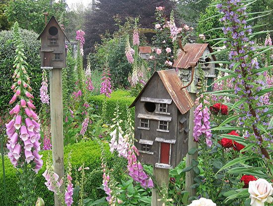 Bird Houses Grow in this Garden too.  ...and the fairies flit from flower to flower.