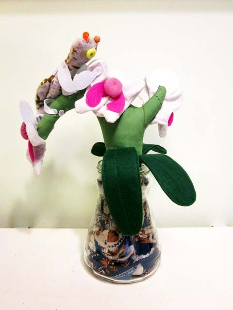 Orchid Mantis and its Plant by Doinky Doodles!, via Flickr