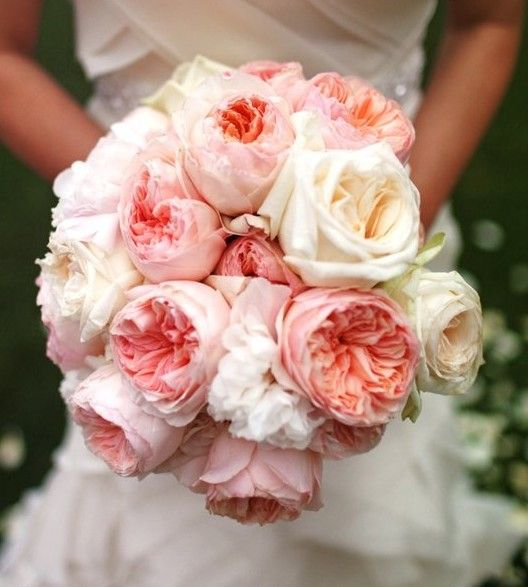 English Rose, Rose Bouquet