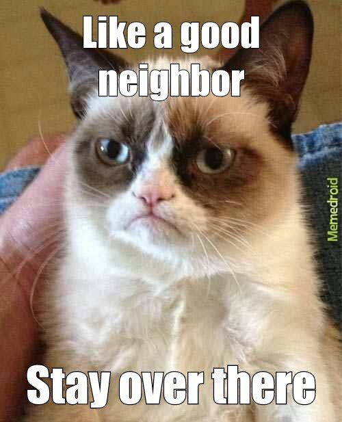 Love the grumpy cat lol