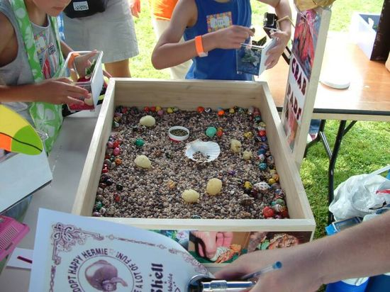 Arts and crafts for your company picnic college event or school carnival michigan ohio indiana illinois