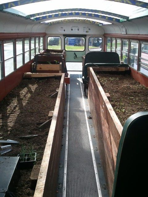 Old School Bus converted into a Greenhouse