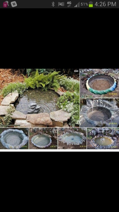 Creative pond made from a tire