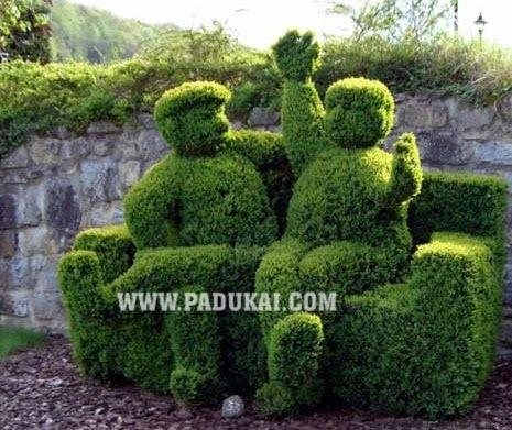 Win Min: Beautiful Grass Sculptures, Garden Designs pictures, Wonderful Green Grass Sculpture stills, Garden Designs Sculptures