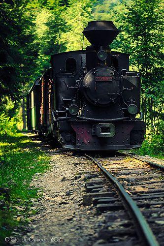 Train     .....rh