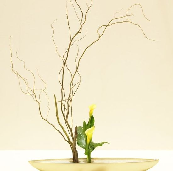 Japanese art of flower arrangement
