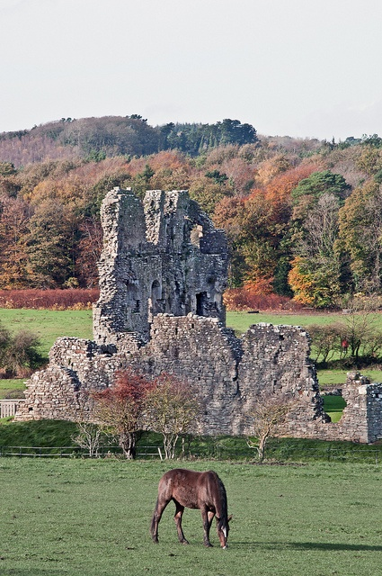 Ogmore Castle, South Wales