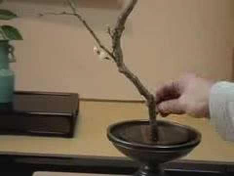 How to make an authentic Ikebana.:)