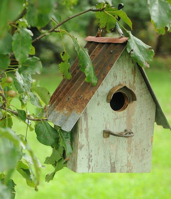 Rusty birdhouse.
