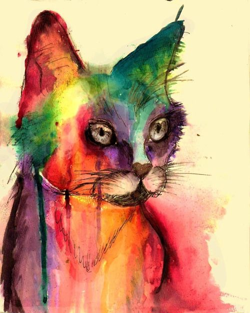 colorful. watercolor. painting. cat.