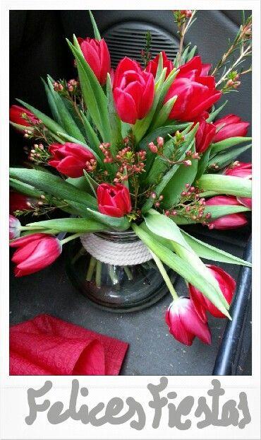 Tulipanes por #navid