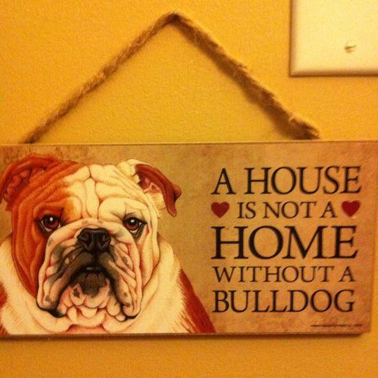Love bulldogs :)