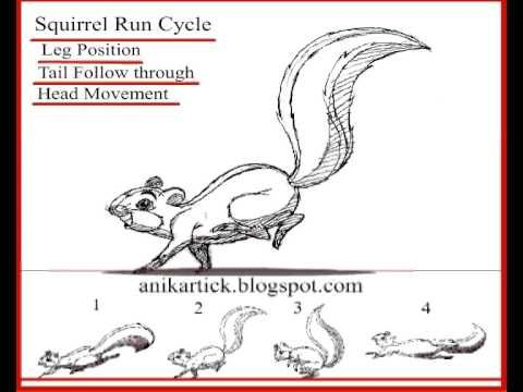 2D Animation - Squirrel Run Cycle Animation