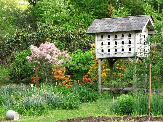 Birdhouse!