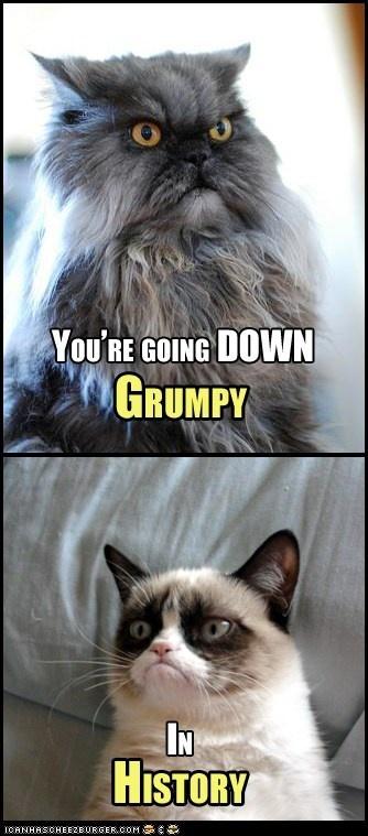 You're going DOWN, Grumpy! #GrumpyCat #Meme
