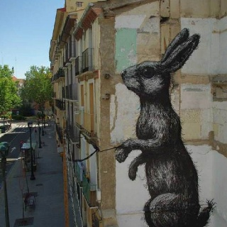ROA - urban art- street art - rabbit - graffiti