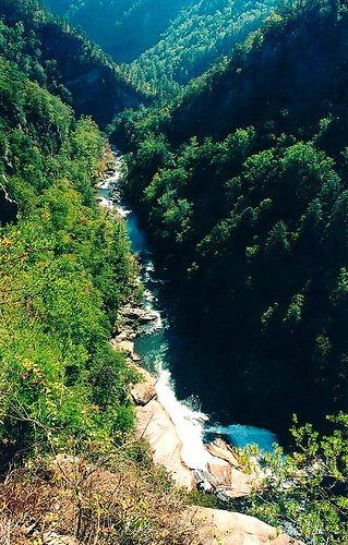 Tallulah Gorge State Park in Tallulah Falls, #Georgia.
