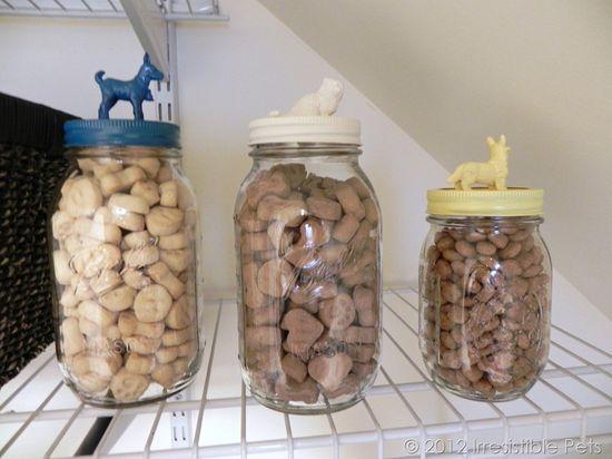 DIY Pet Treat Mason Jars
