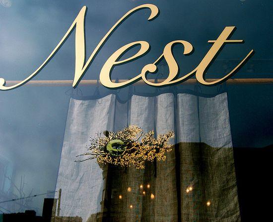 nest on fillmore