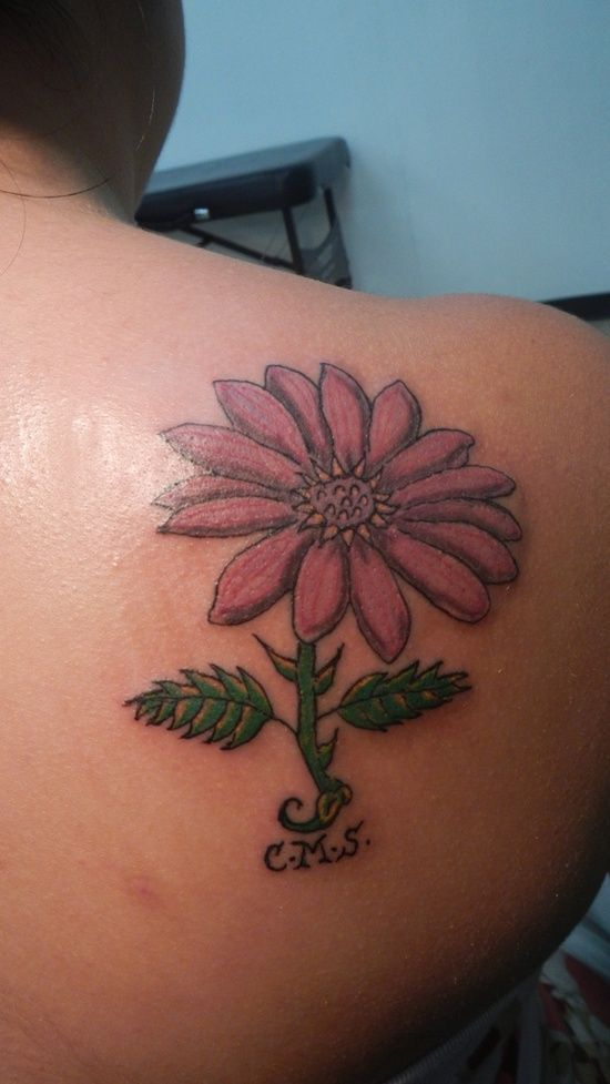 Gorgeous Daisy Tattoo Designs