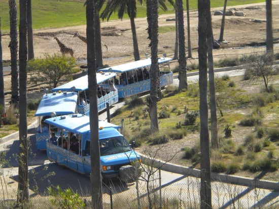 San Diego Zoo Wild Animal Park - tram