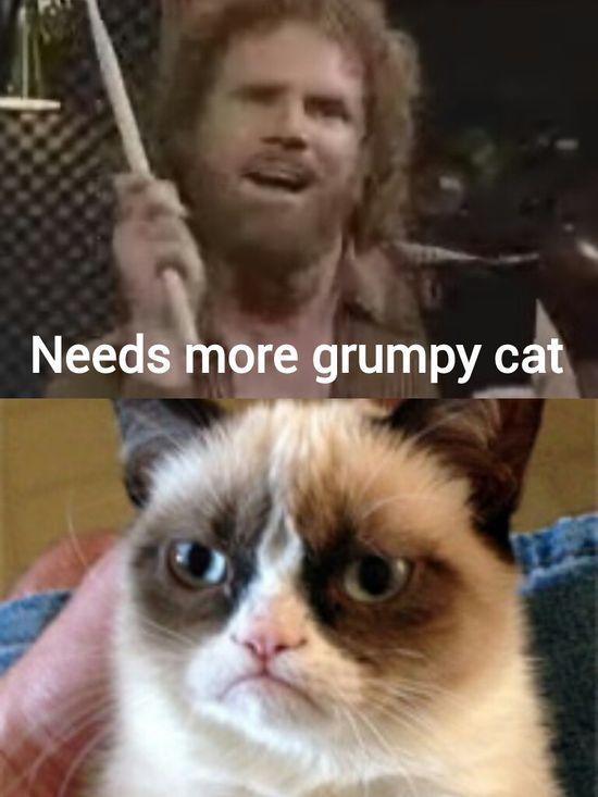Needs more Grumpy Cat  #GrumpyCat #meme