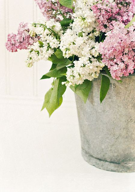 Flowers in galvanized buckets.  Great combo.