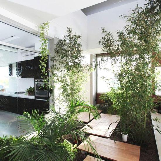 wood, glass, greenery