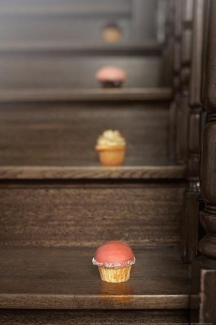 cupcakes...so cute.