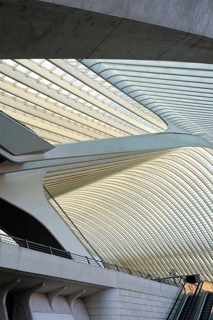 Station Liège Guillemins  Calatrava