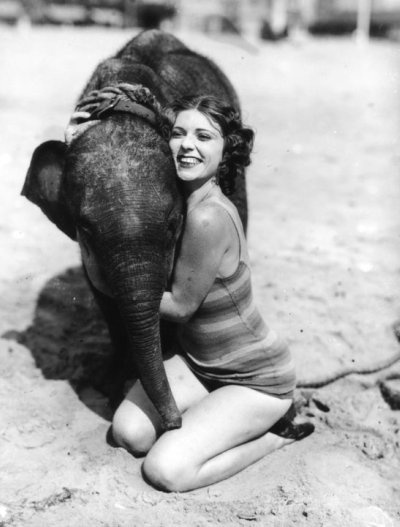 """""""Women and elephants never forget,"""" -Dorothy Parker"""