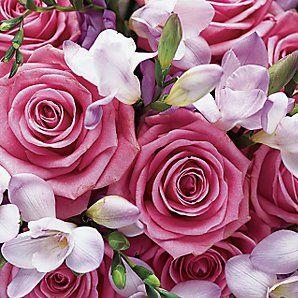 swirly pink