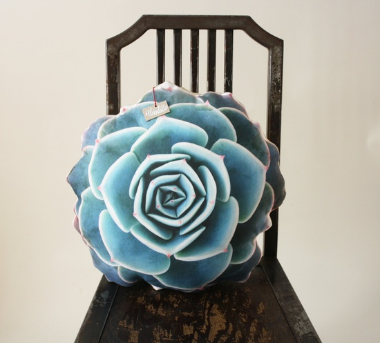 Succulent pillow by Plantillo. Awesomest thing ever!