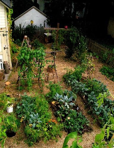 garden#garden interior #garden decorating #garden decorating before and after