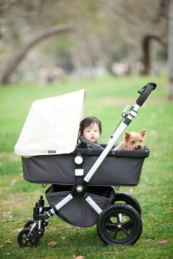 cute baby (& pup!) photo