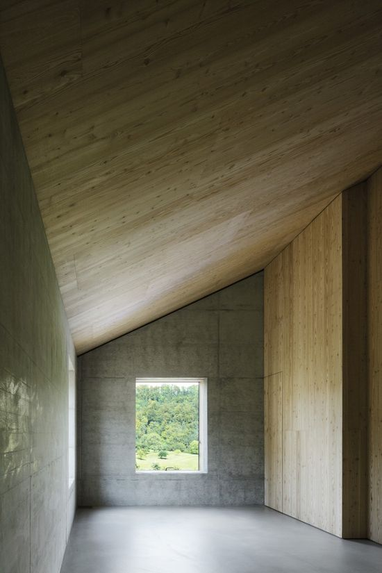 Wood and concrete. House D by HHF Architects.