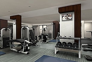 Great Contemporary Home Gym - Zillow Digs